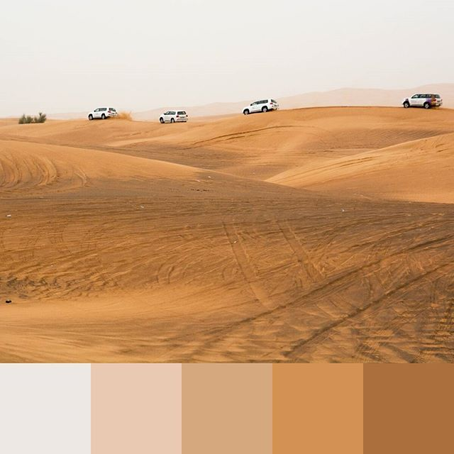 Noice warm monotone color palette from the United Arab Emirates. Fun tip to extract color palette from a photo: open a photo in Photoshop, and change the image size to just 20px on the longest edge. Now zoom in and use the eyedropper tool to choose 5 or so of the most prominent colors. BAM. More detailed walkthrough coming to a blog near you very 🔜. -- #colorpalette #creativelife #colorventures #chasinglight #agameoftones #colorinspo #colorinspiration #colors #colortheory #colorgram #designspiration #design #graphicdesign #designtips #uae #dubai #travel #travels
