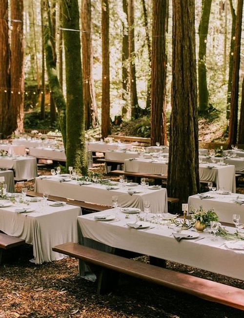 http://www.100layercake.com/real-weddings/eclectic-sentimental-forest-wedding-robert-alexis/