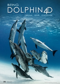 Being Dolphin Poster