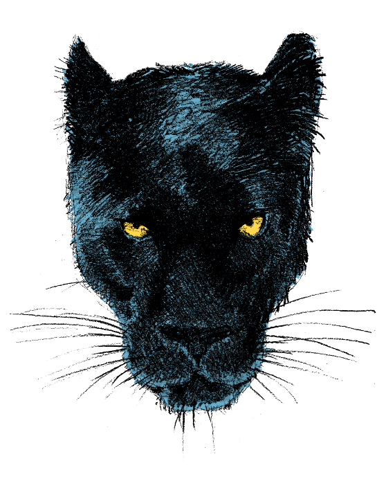 Panther, slightly different style than the others
