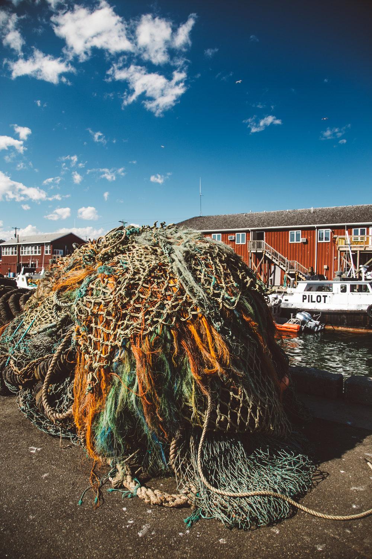 Nets on Merrill's Wharf. Jenny Rebecca Nelson © 2016.