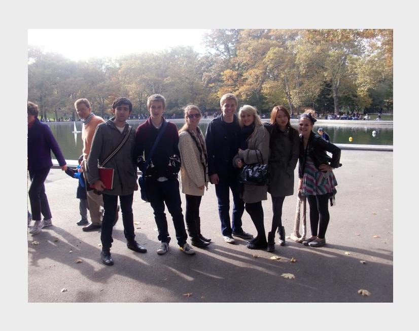 The art trip. November, 2010