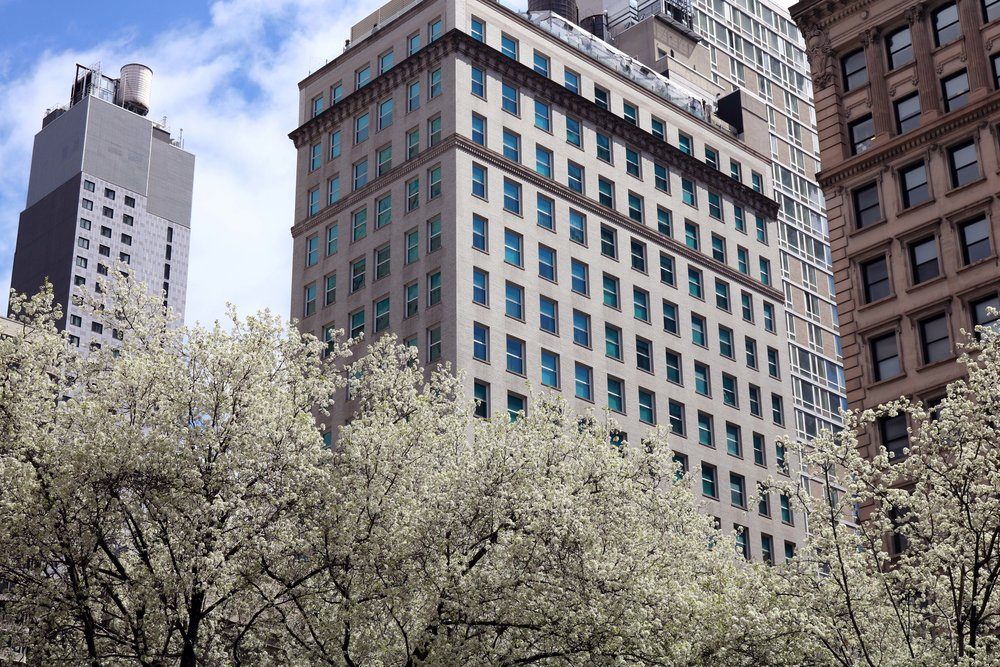 Manhattan Springtime - Spring 2018 • PlacesA photographic journey through Manhattan in Springtime. A city first visited as part of a school art trip in 2010, the opening year of Tom Martin London and later inspired part of the Winter 2016 Collection.View the photography