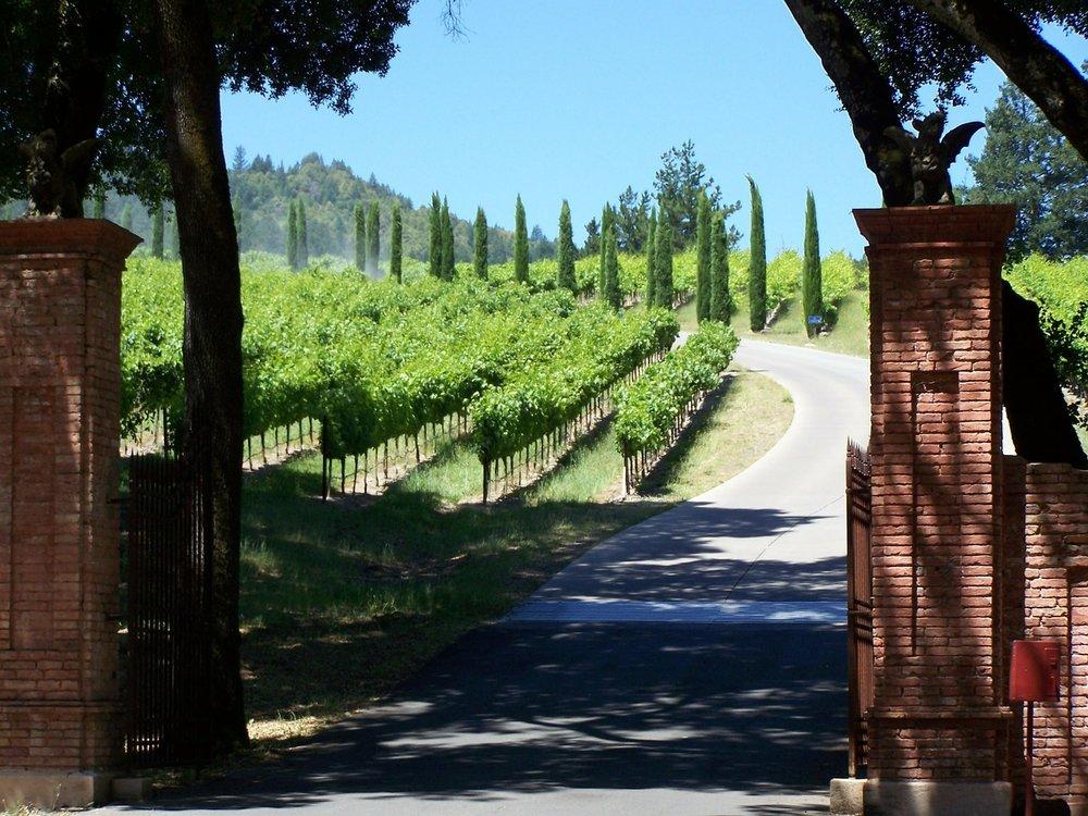winery-244598_1280.jpg