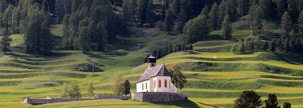 mountain-meadow-3593319_1280.jpg