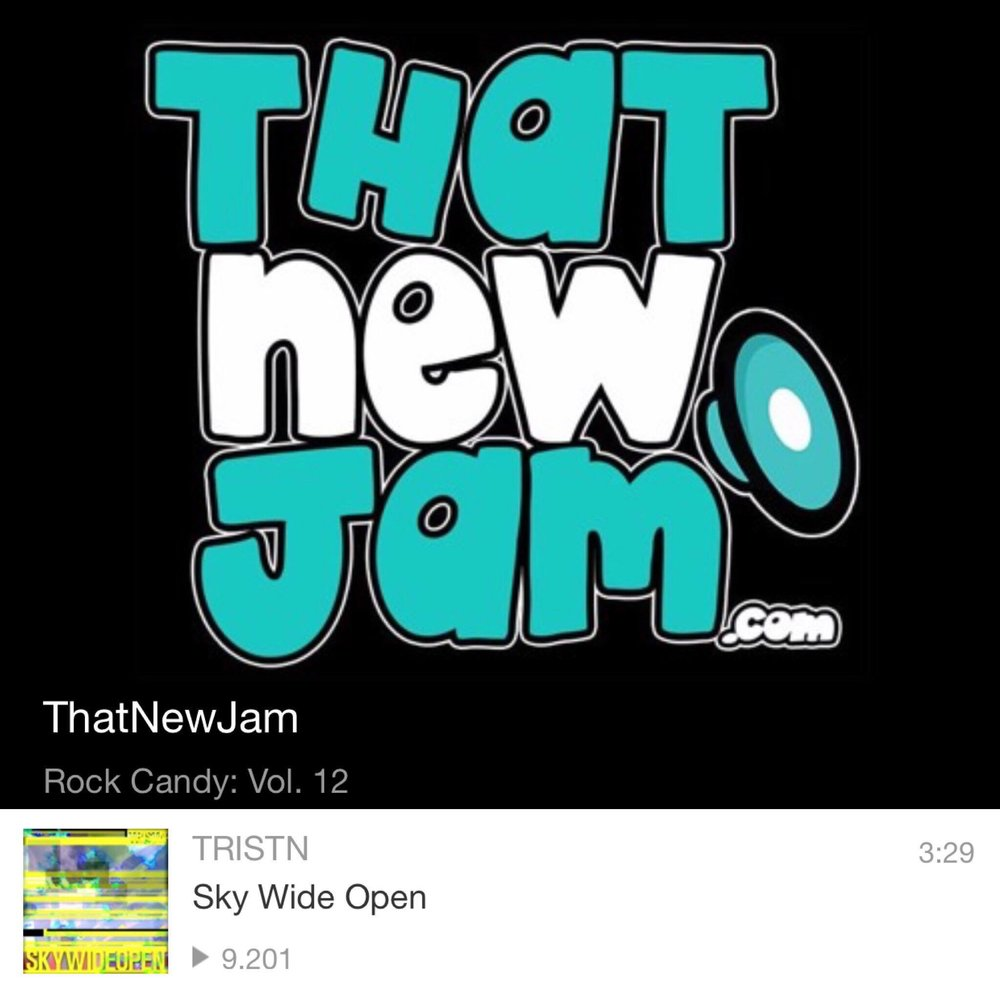 THAT NEW JAMROCK CANDY Vol. 12 - CHECK OUT THE PLAYLIST!!THANK YOU THATNEWJAM.COM
