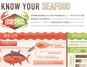 Know Your Seafood | One World One Ocean