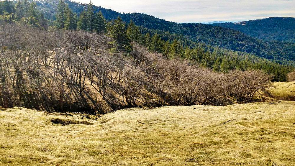 mother earth engineering rural land development.jpg