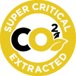c02-super-critical-extracted-icon-yellow.png