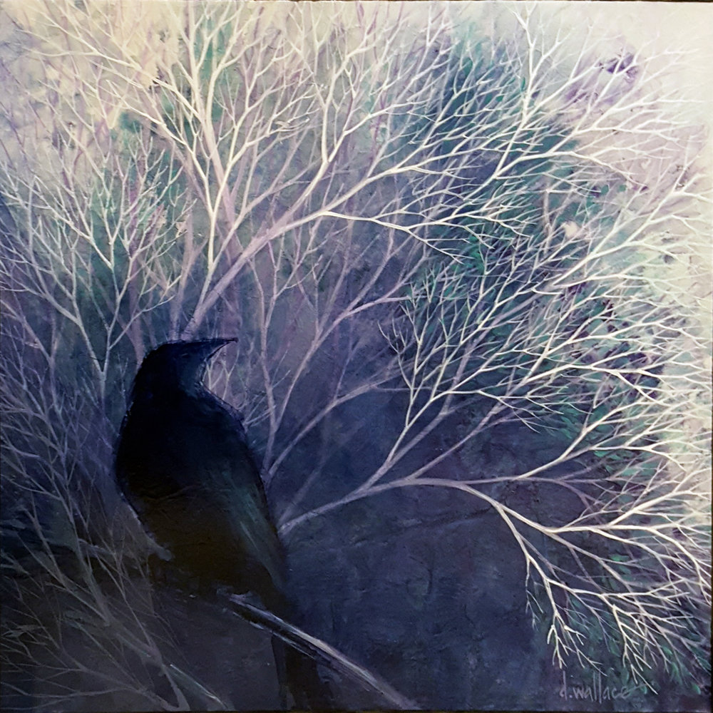 Night Feathers - Wrapped canvas, deep 12x12 SOLD