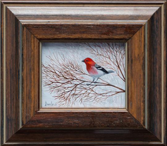 16297 - Redbird.png