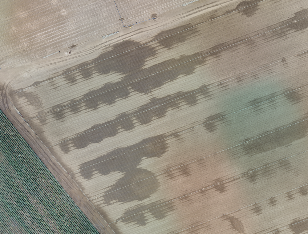 Aerial images revealing irrigation patterns.