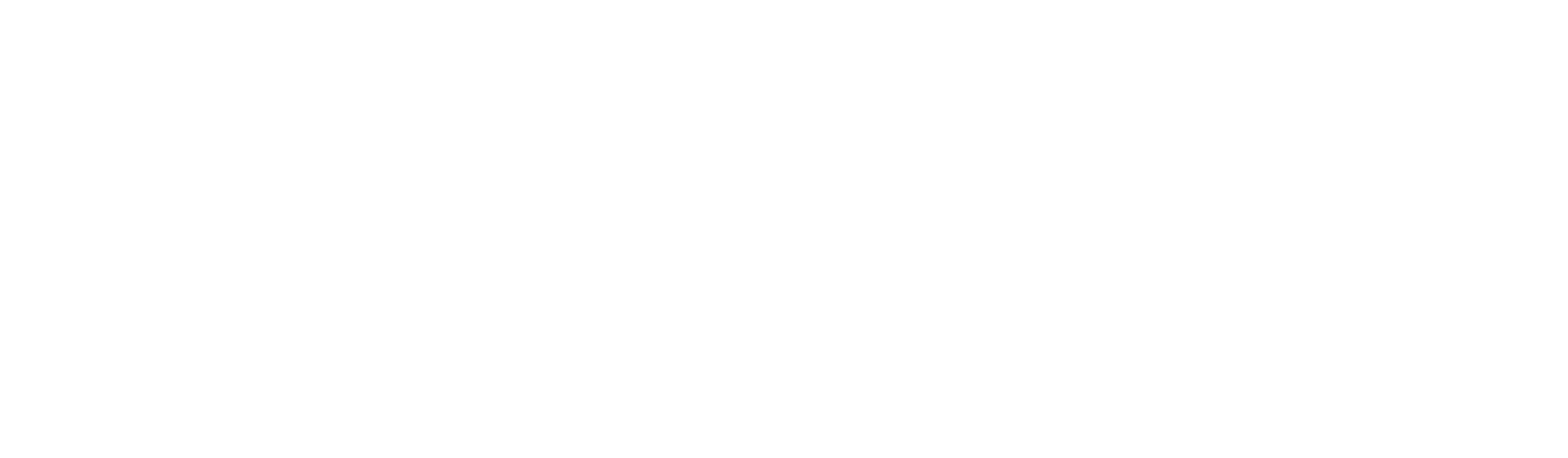 The Nascon Dingos