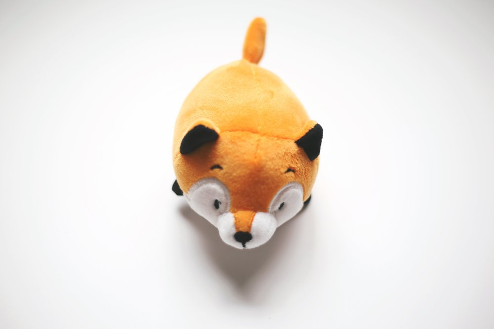 A toy fox rattle