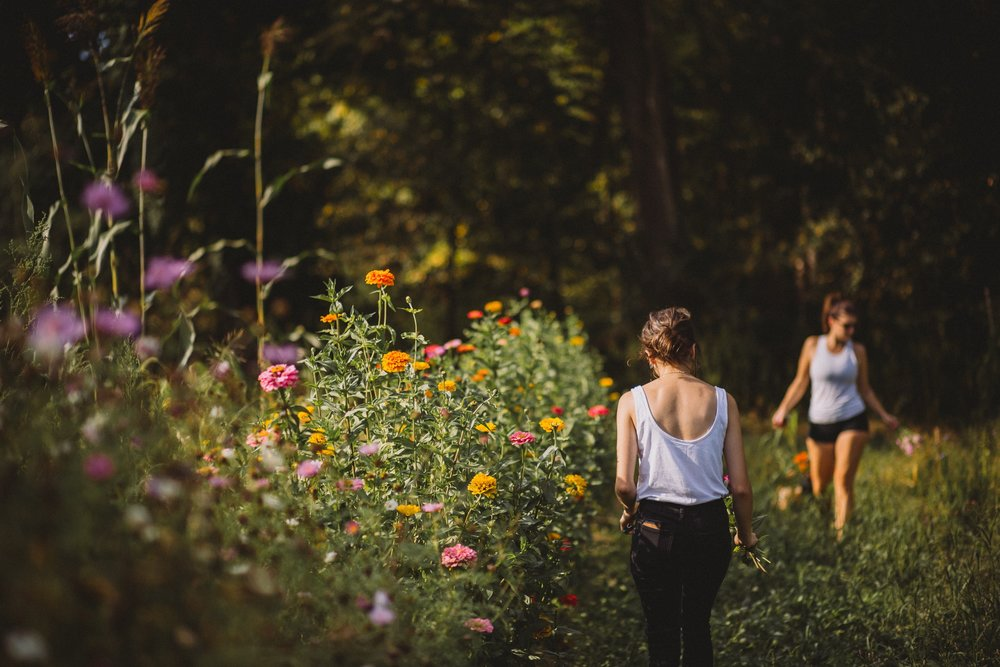 Women picking flowers in fields near Cleveland, Ohio -  Photography by Tiffany Joy