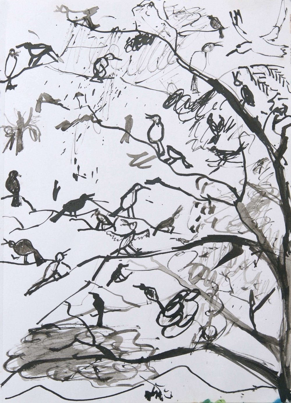 LOUD BIRDS Pen and Ink on Paper | 2008 (original only available) £120