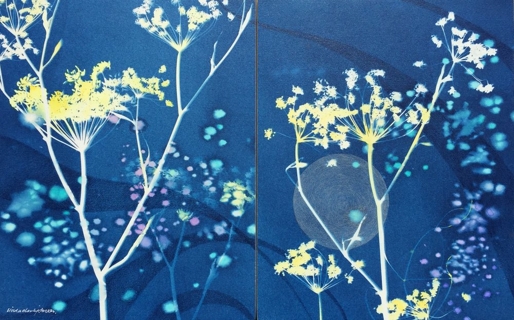 Moon Seed Diptych  | cyanotype with salt, watercolor, colored pencil on panels | 7 x 10 | SOLD