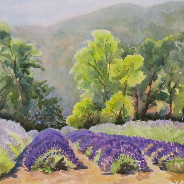 Lavender Fields  | watercolor | 14 x 14 | SOLD,  prints available