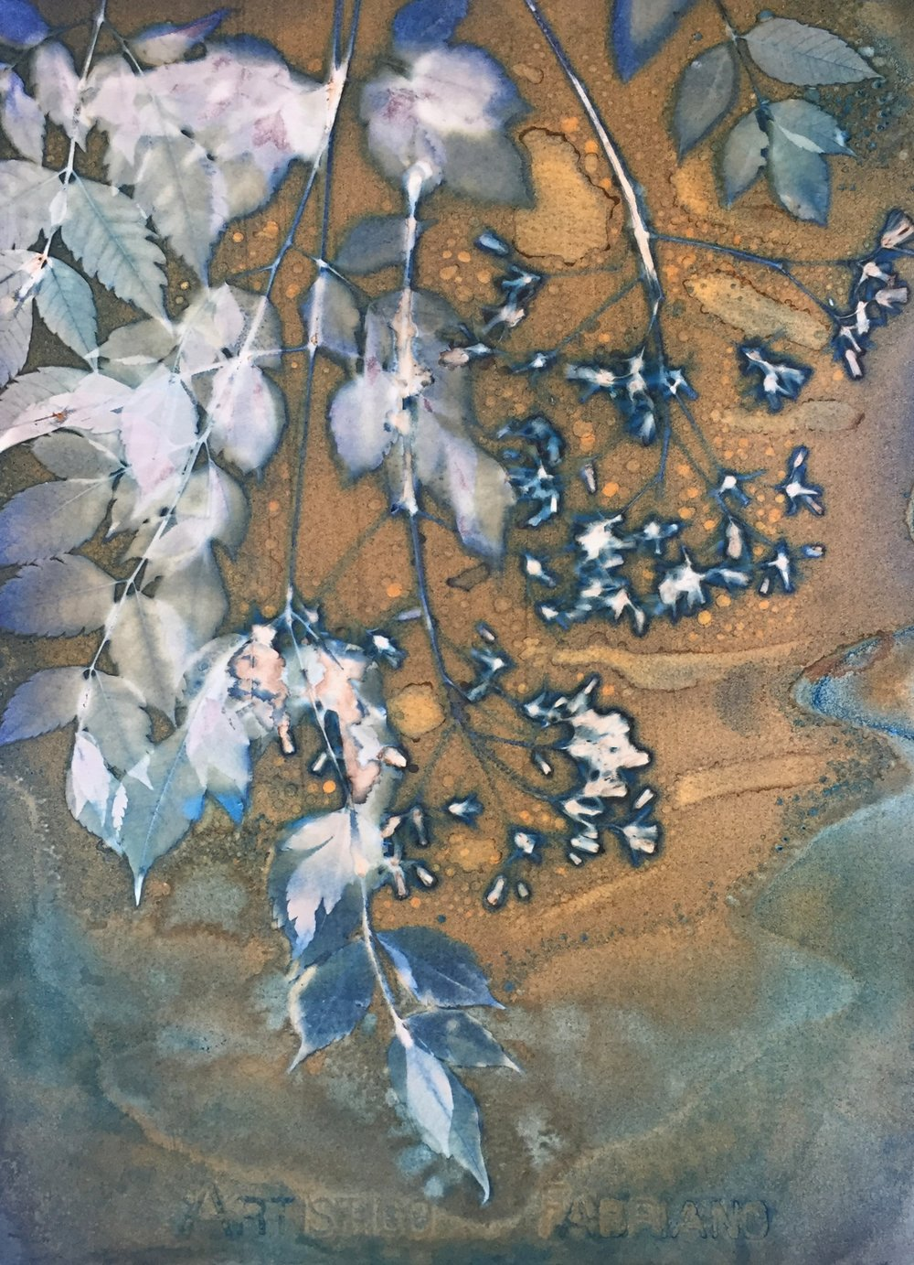Spring in the Alley 2  | cyanotype | 16 x 20 |SOLD