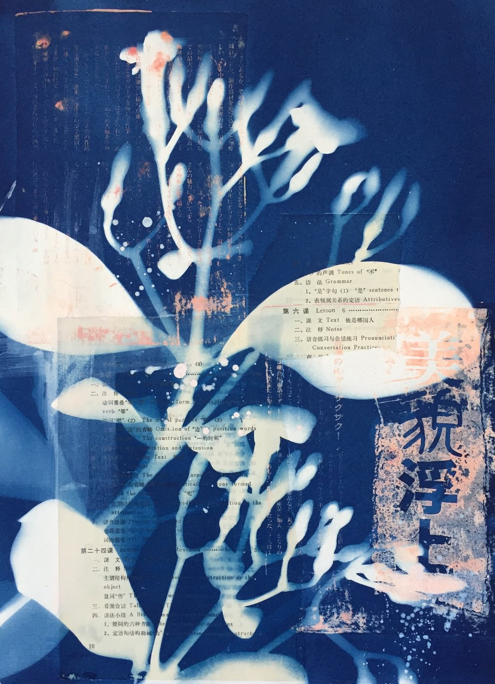 Kahaku Makani  | cyanotype, collage, and monoprint, framed | 16 x 20 | $300