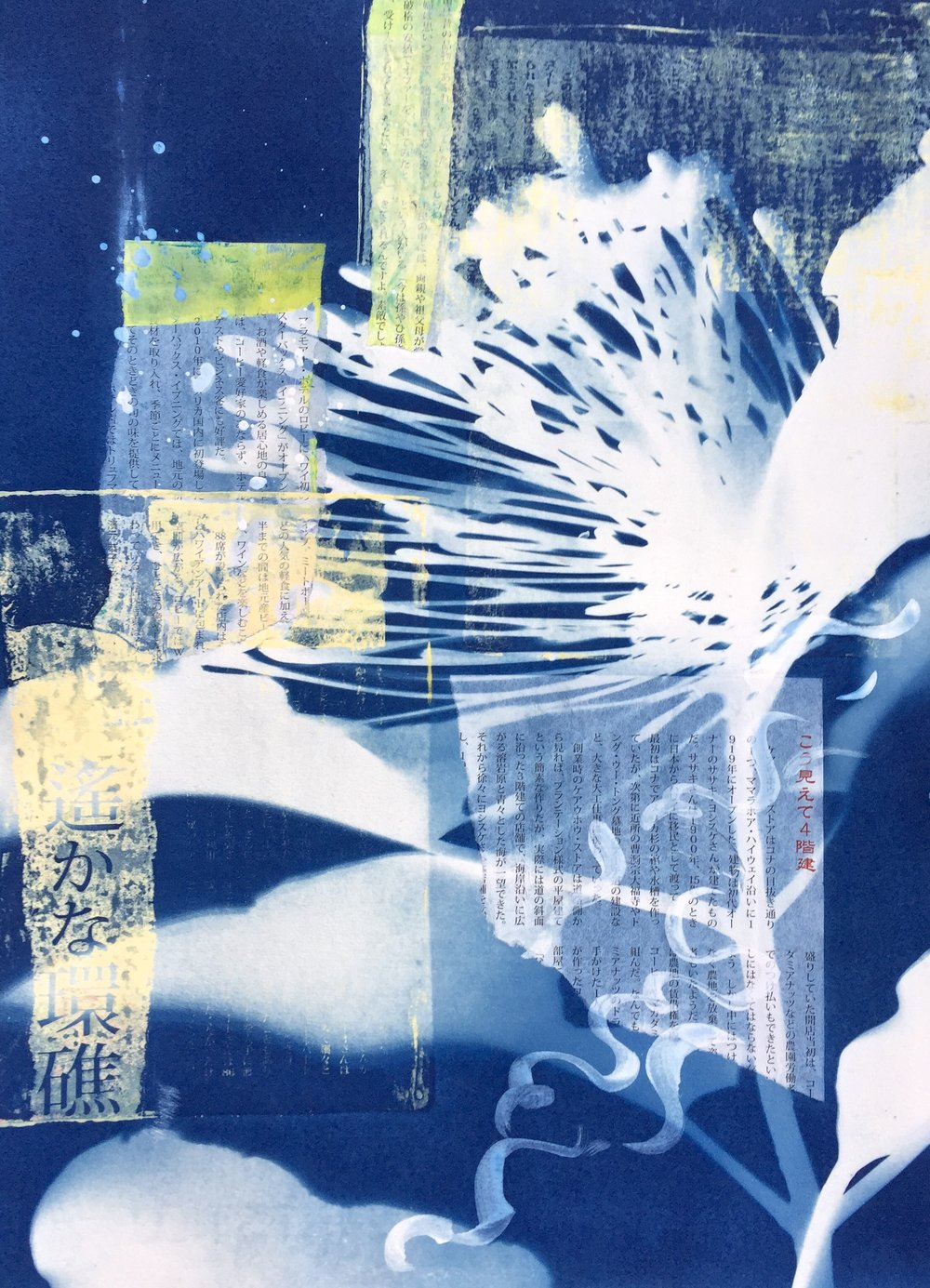 Hana Hou Shadows  | cyanotype, collage, and monoprint, framed | 16 x 20 | SOLD