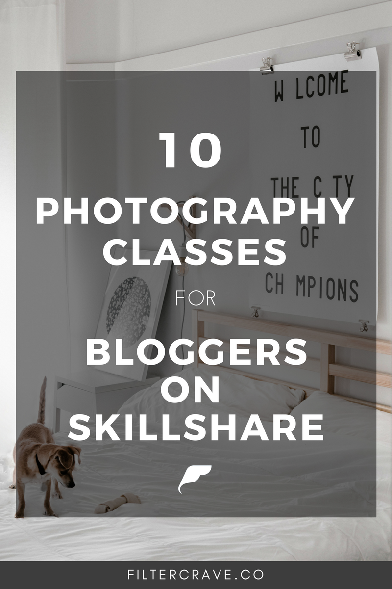 Whether you are a beginner photographer, blogger, or entrepreneur online photography classes are a great way to kickstart your photography skills. Skillshare is an excellent place to find high quality online classes for creatives. In this post, I share 10 online photography classes for beginners that teach essential photo tips, camera terms, and photography techniques. | Filtercrave Photography Tips   #photography #photographytips #lightroom #lightroompresets #photographytutorial #photographytutorial #skillshare