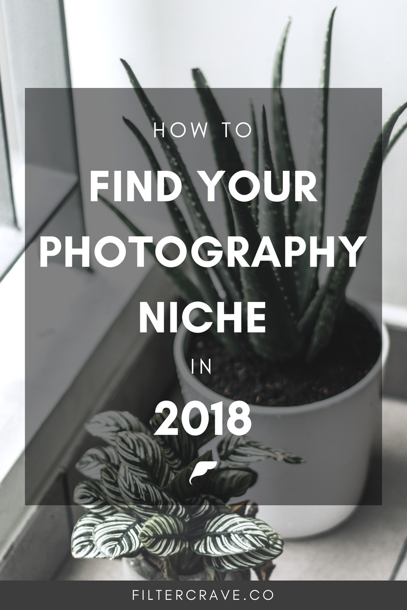 How to Find Your Photography Niche in 2018 | Filtercrave Photography Tips #photographytips