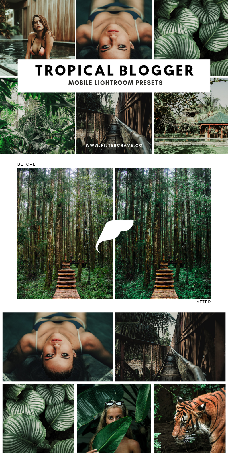 Tropical Blogger Mobile Lightroom Presets | Filtercrave.png