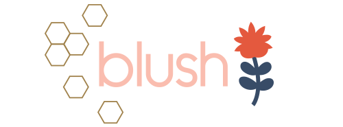 blush-by-dana-willard-white-logo.png