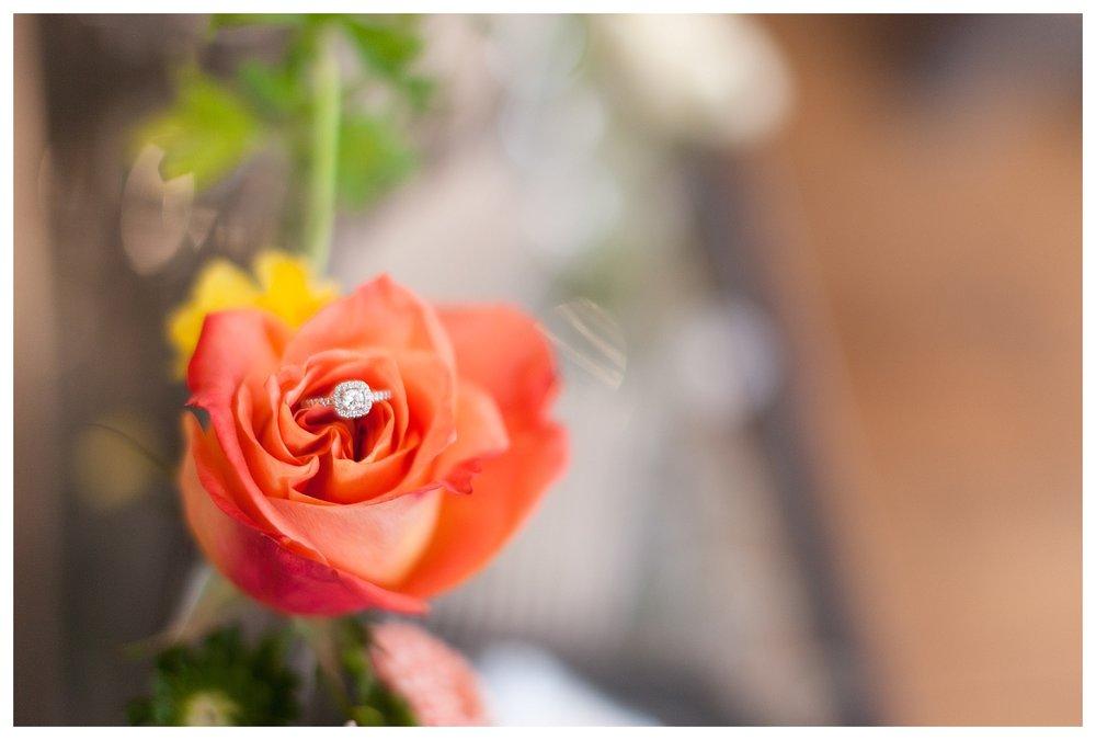 Charlevoix Wedding Photographer_0416.jpg