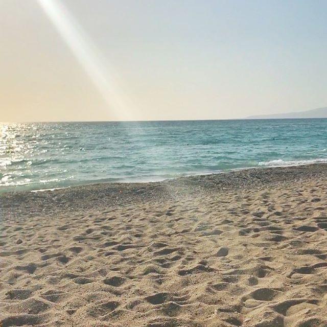 Paradise ✨