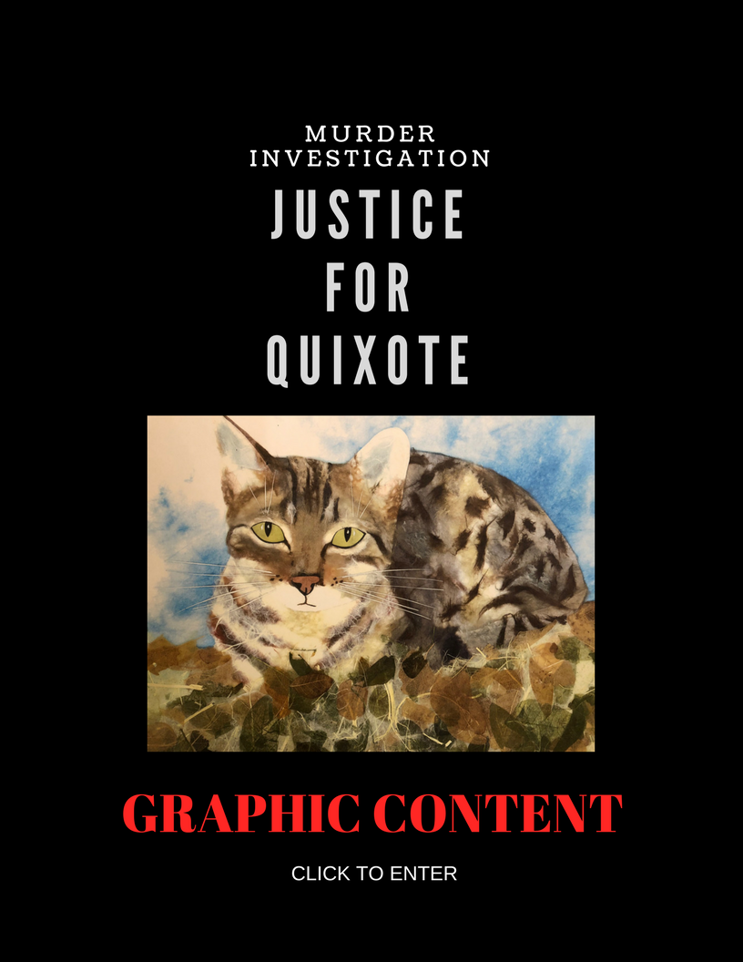 Justice For Quixote landing page.png