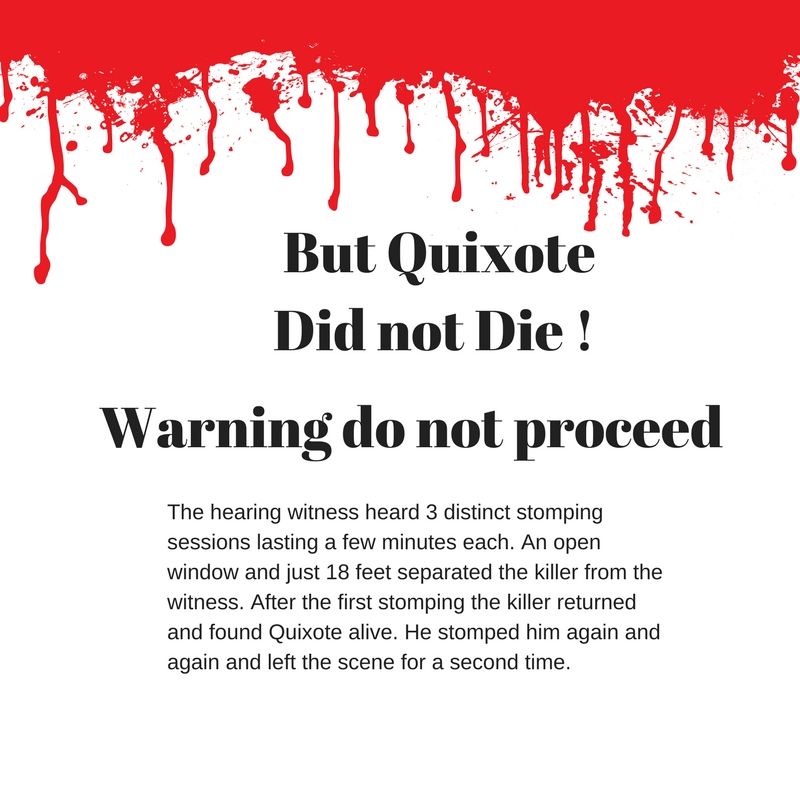 Quixote did not die 2.jpg