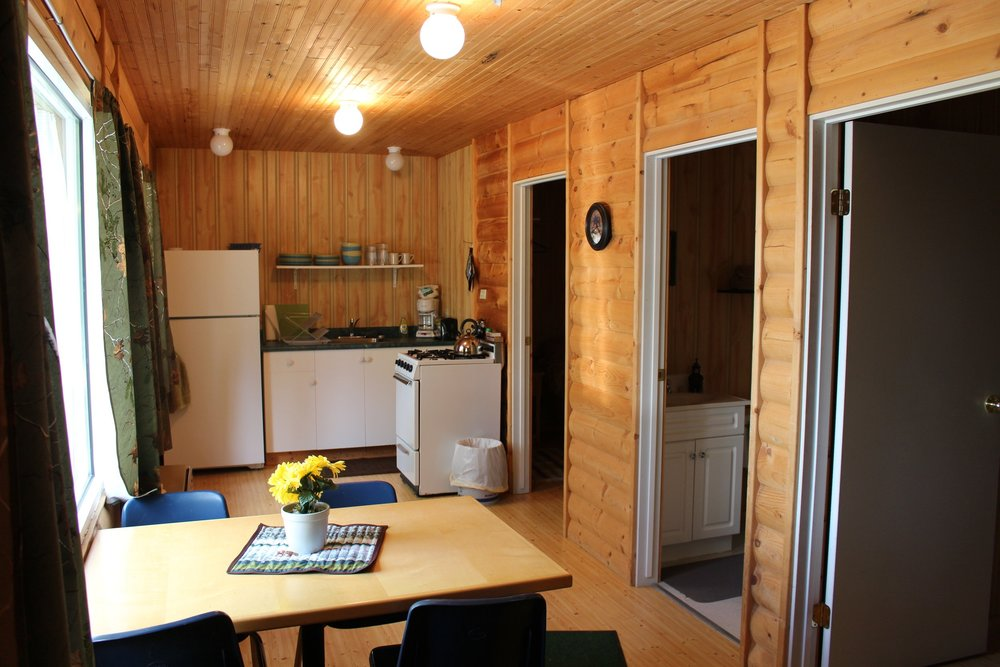 modern-cabin1-inside-wfo-wollaston-lake.jpg