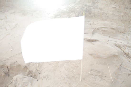Latham Zearfoss,  WHITE BALANCE . Video still, 2018. Image courtesy of the artist.