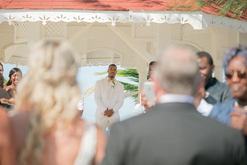 Ashley___Michael___Daniel_Ricci_Weddings_High_Res._Final_0138.jpg