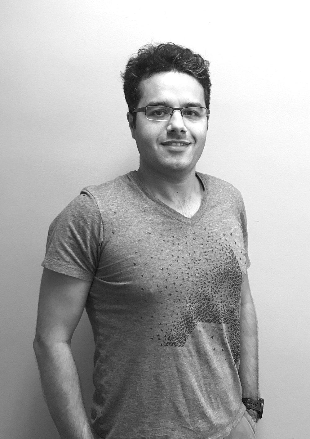 Hamed Karimi