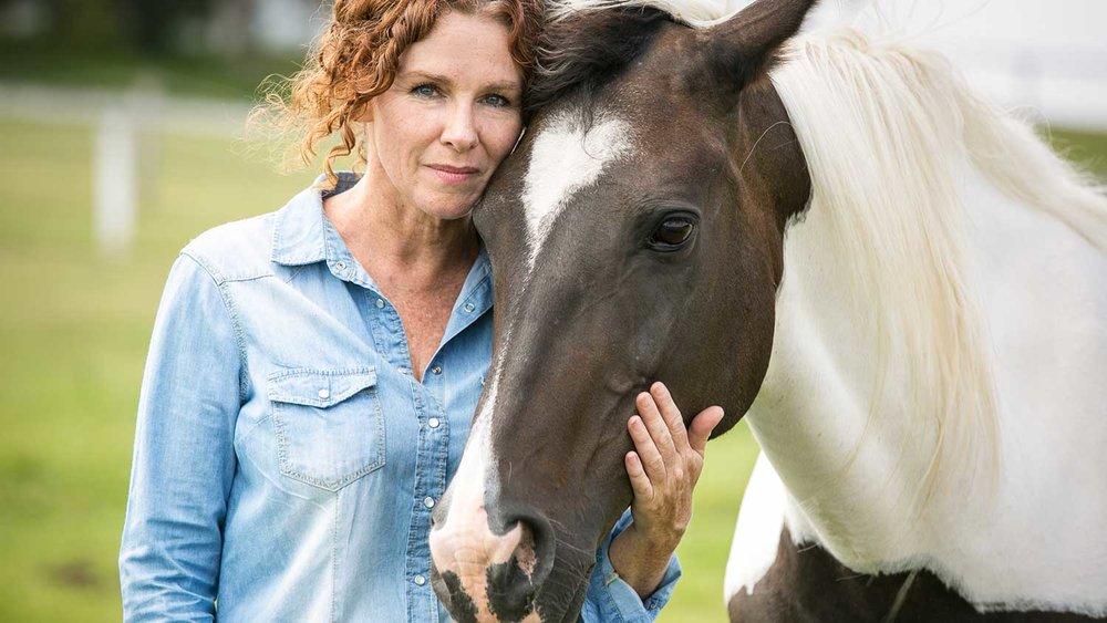 Horse+J2.jpg