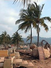 bangkoko03.jpg