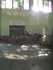 china16.jpg