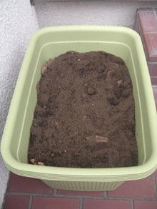 compost07.jpg