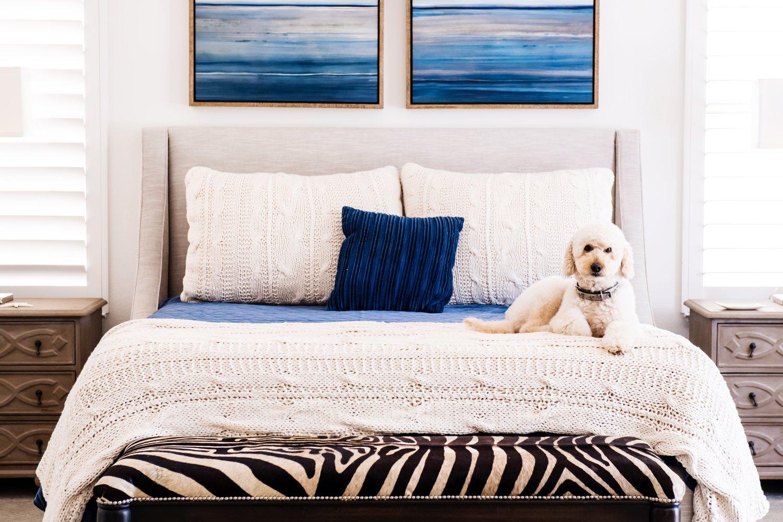Coastal Master Bedroom: When to \'Splurge\' vs. \'Save\' — Savvy Interiors