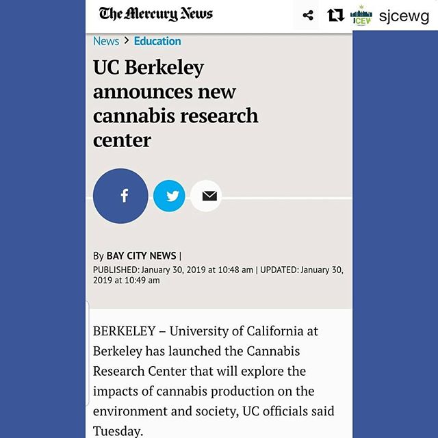 #Repost @sjcewg with @get_repost ・・・ Thank you @ucberkeleyofficial for launching the Cannabis Research Center!  The Bay Area will continue to be a bustling ganja epicenter as more and more of our communities embrace the future of California cannabis.  If we keep this up, we will enjoy international distinction as one of the go to spots in California for cannabis tourism.  Easy Day.  #sanjose #siliconvalley #sjcewg #bayarea #cannabisequity #southbay #santaclaracounty #cannabisculture #cannafornia #ganjier #workworkwork