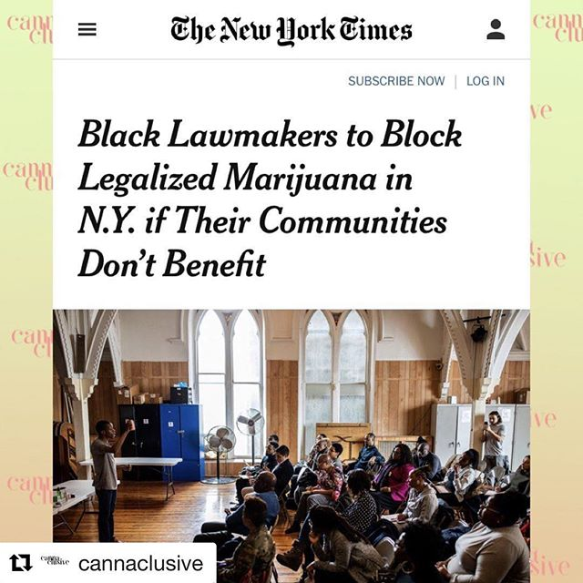 """🔥🔥🔥 #Repost @cannaclusive with @get_repost ・・・ First, a shout out to @420sight, a dynamic young cannabis advocate who is the Co-founder and Deputy Director of @cannacultural, featured in the image (addressing the audience). He's one of our colleagues doing the work to ensure Black and Latinx people are represented in the fight to legalize cannabis in New York. ⠀ ⠀ Second ... read this: """"Black lawmakers are blocking a push to legalize recreational marijuana in New York, warning that Gov. Andrew M. Cuomo's proposal could perpetuate the racial inequality fostered under current drug laws.⠀ ⠀ The lawmakers say that unless people of color are guaranteed a share of the potentially $3 billion industry, there may be no legalization this year. They want to be assured that some of that money will go toward job training programs, and that minority entrepreneurs will receive licenses to cultivate or sell the marijuana.""""—via The New York Times ⠀ We're not having it. Black, Latinx, poor folks and other marginalized people harmed by the war on drugs deserve better. Period.⠀ ⠀ Third ...: Click the link in our bio to demand cannabis equity from the start!⠀ ⠀ #equitydayone #cannabiscommunity #cannabisculture #legalcannabis #legalizeit #nycannabis #nyccannabis"""