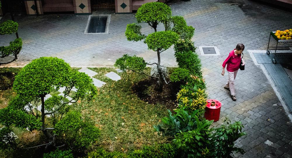 Andrew_Braithwaite_Singapore_1.jpg