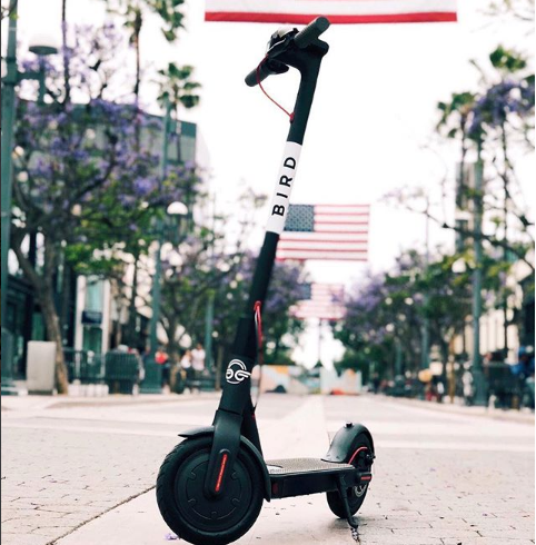 ABOUT BIRD - Bird is an electric vehicle scooter ride sharing company that is redefining how people getting to local destinations on electric scooters. They are searching for campus events to sponsor as the Official Transportation partner.