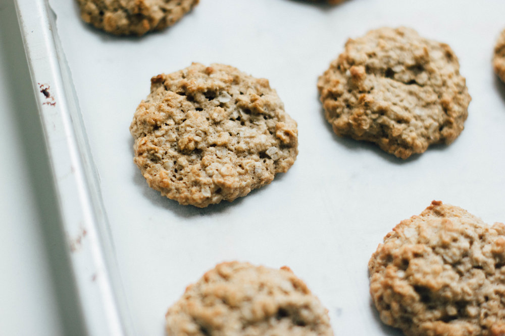 doggie oatmeal ginger cookies