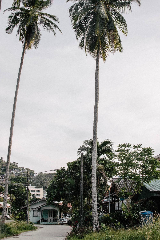 phuket 23-1.jpg