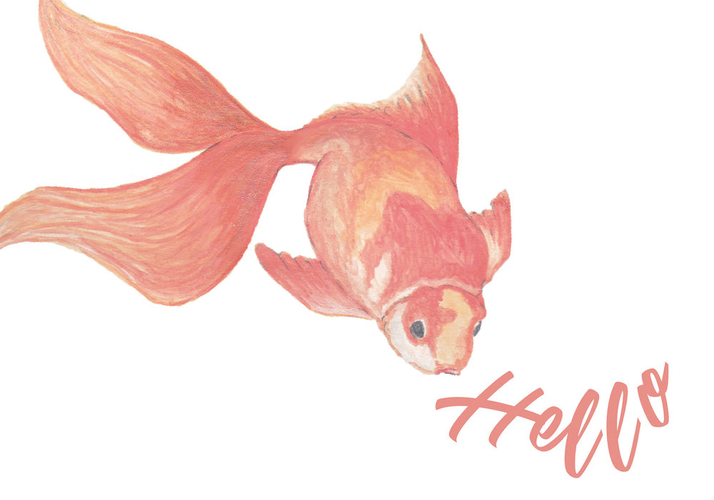 Paper-Roses | Note cards | Goldfish | Hello