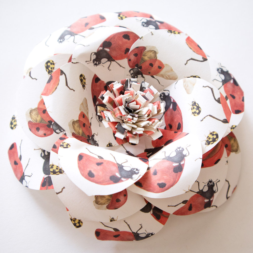 Paper-Roses | Paper flower tutorial | Finished flower